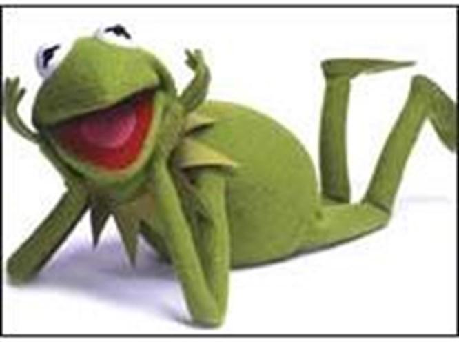 Kurbağa Kermit 50 yaşında